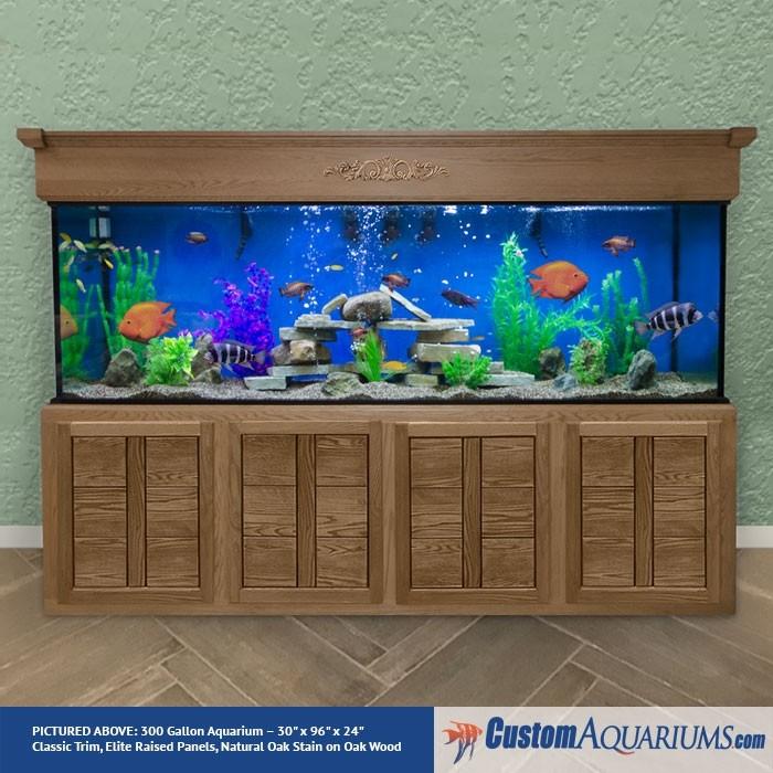 300 gallon aquarium custom glass fish