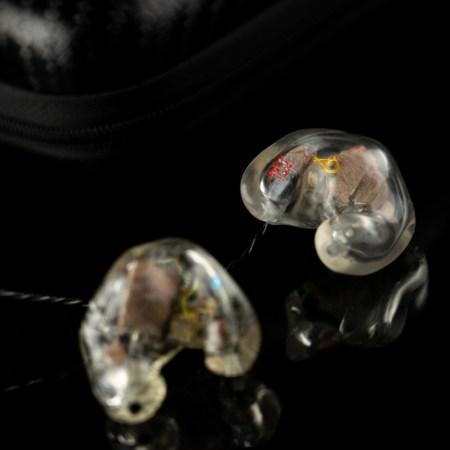 Custom Electronic Hearing Protection Custom Dental Hearing Protection The Oz Big Ear