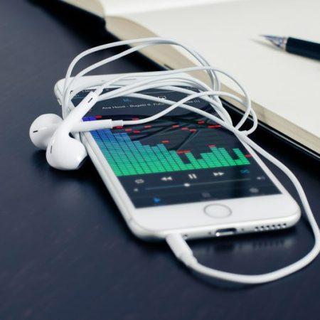 iPod Ear Bud Adapters