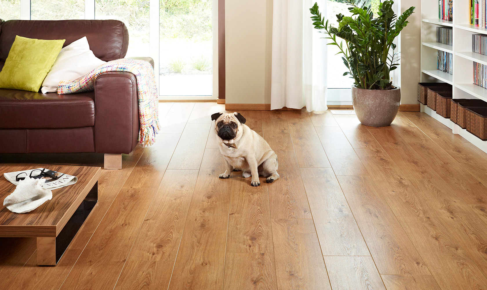 Laminate is a great choice for children and pets!