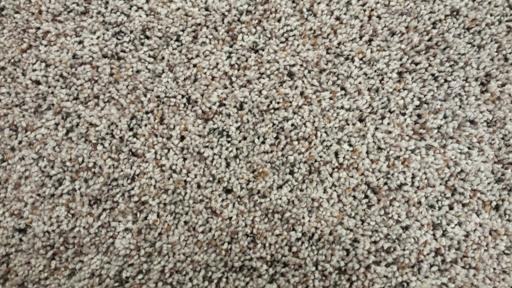 Mohawk PET Carpet - Simply Divine - Wooded Grey