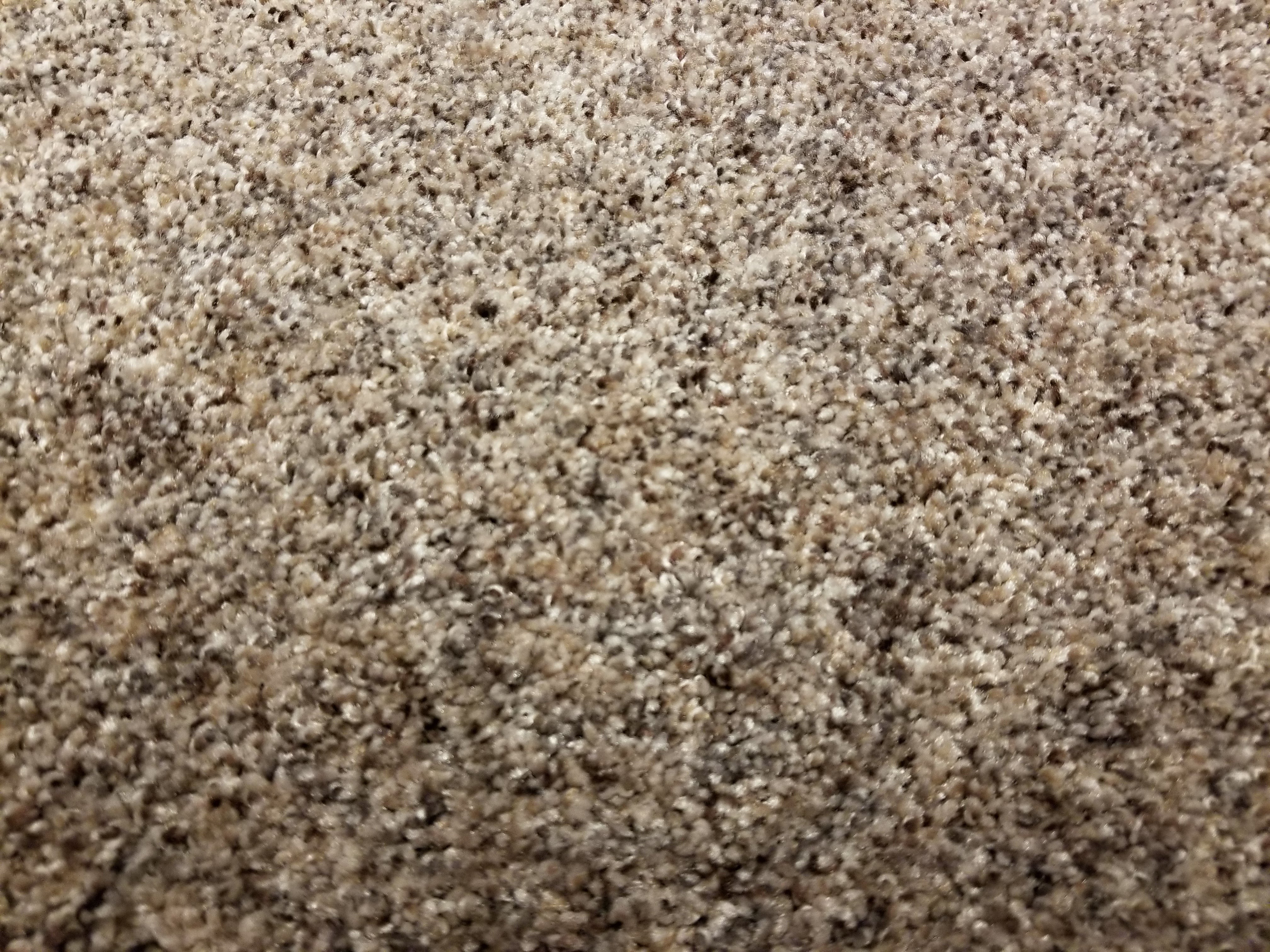 Mohawk Carpet's High Point in color Rocky Road - 54 oz Ultra Plush PET