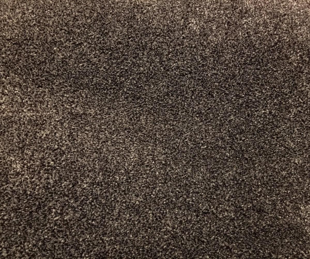 Mohawk Carpet - Distinct Beauty III - Marina - 75 oz Everstrand Revive PET - 12' Wide - In Stock Clearance