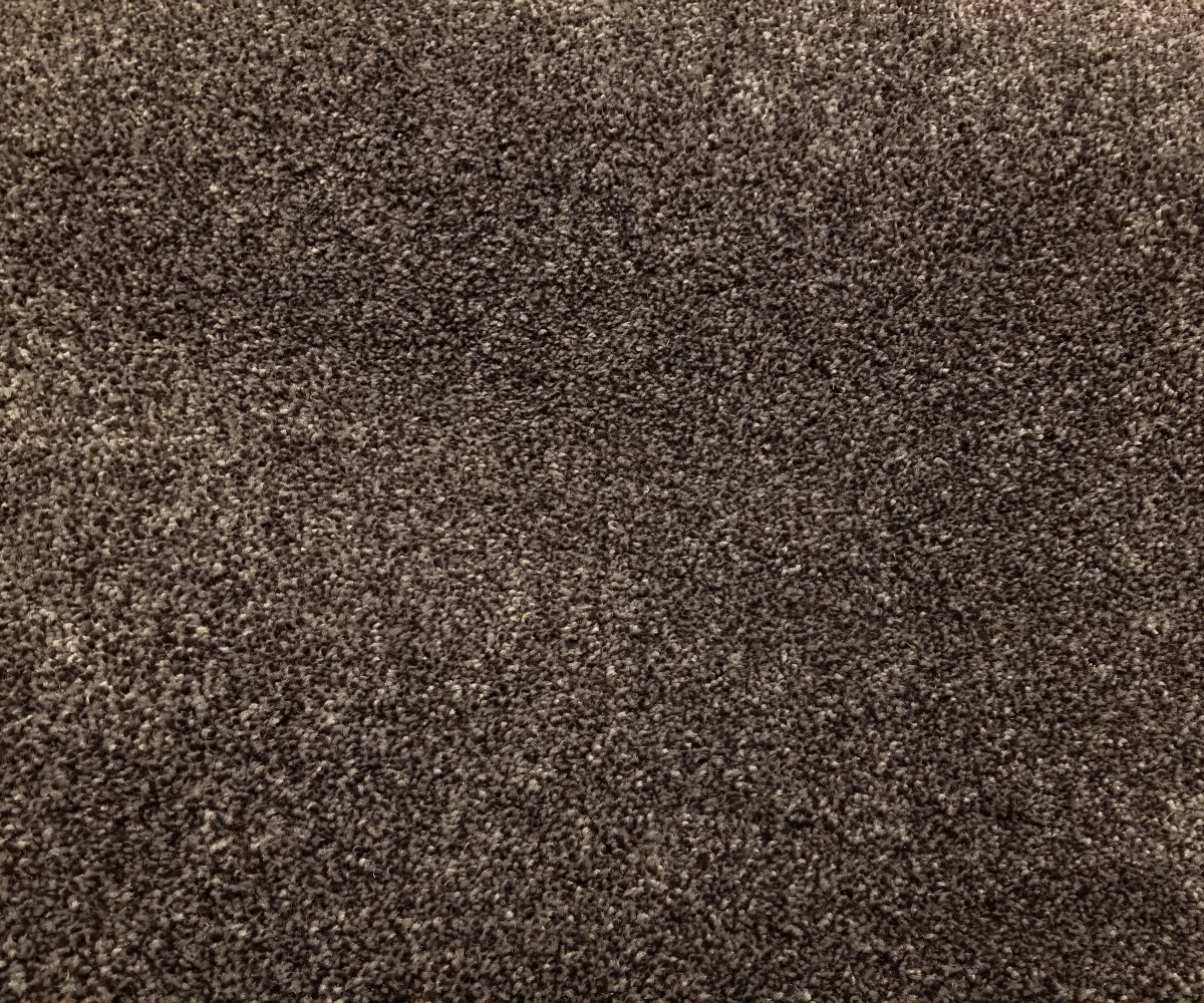 Mohawk Carpet - Distinct Beauty III - Marina - 75 oz Everstrand Revive PET - 12' Wide - In Stock Clearance
