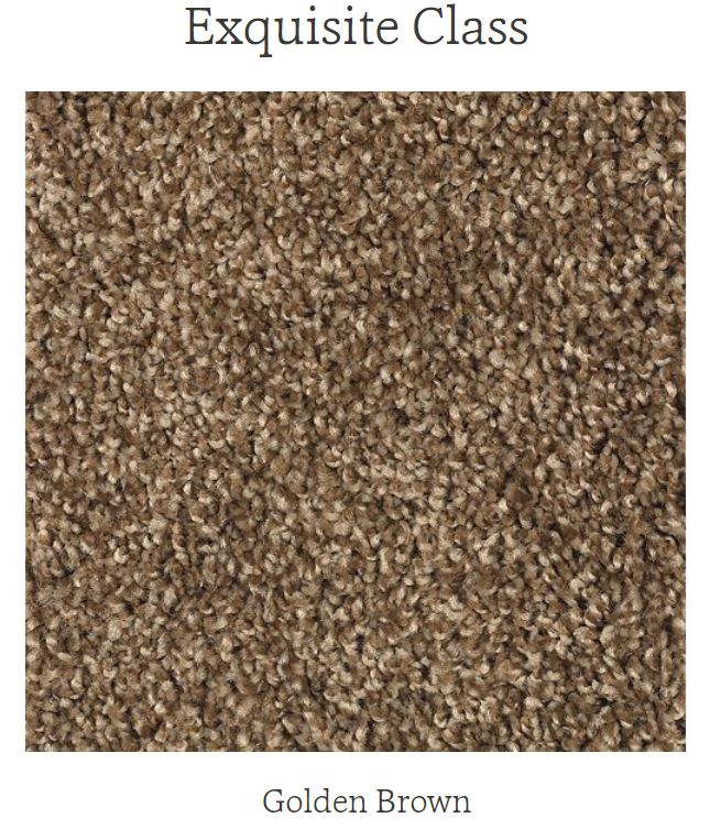 Mohawk Carpet Exquisite Class in color Golden Brown Cocoa