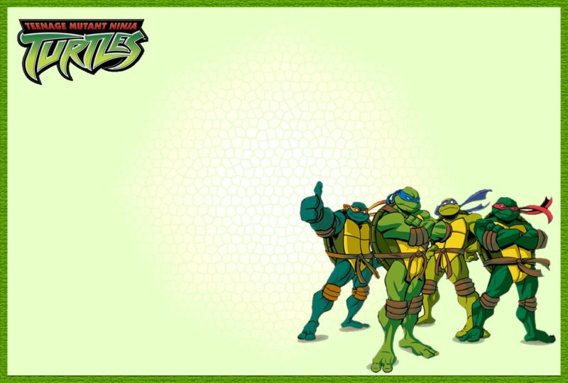teenage mutant ninja turtles another