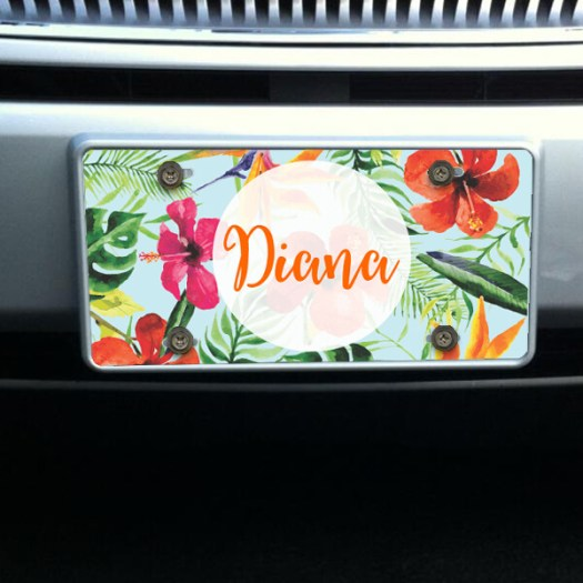 Personalized Tropical Front License Plate