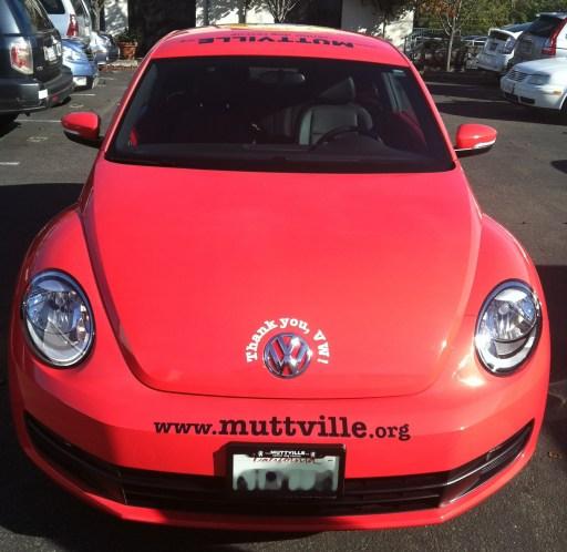 muttville car wrap-01