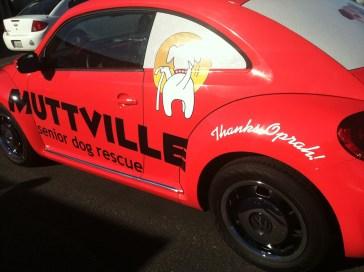 muttville car wrap-05