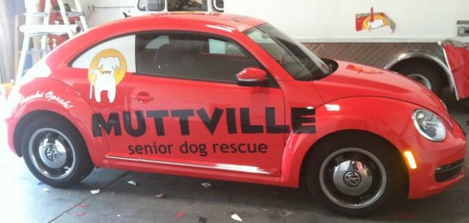 muttville car wrap-11