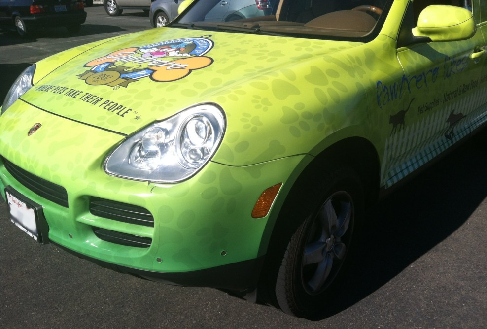 pawtrero car wrap-09