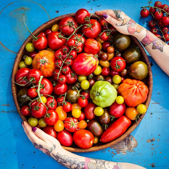Tomaten in allen möglichen Farben und Formen
