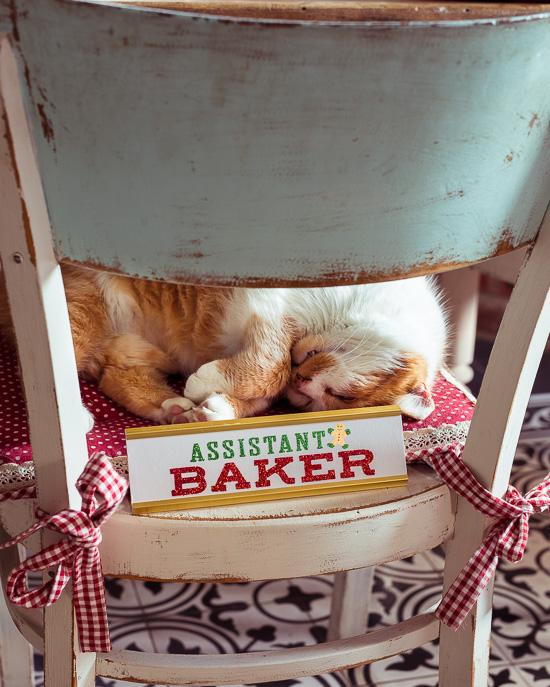 Heute habe ich die Rote Katze zum offiziellen Assistant Baker ernannt