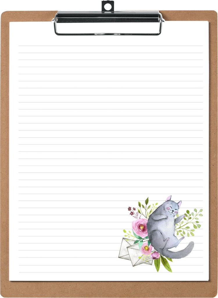 Grey Fat Cat Pen Pal Stationery