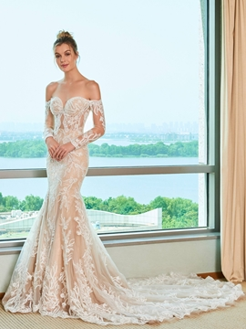 Long Sleeves Off the Shoulder Mermaid Color Wedding Dress