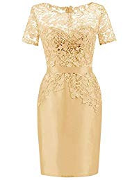Sheath Lace Bateau Short Sleeves Mother of The Bride Dress