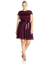 Plus-Size Lace Fit and Flare Cap Sleeve Dress