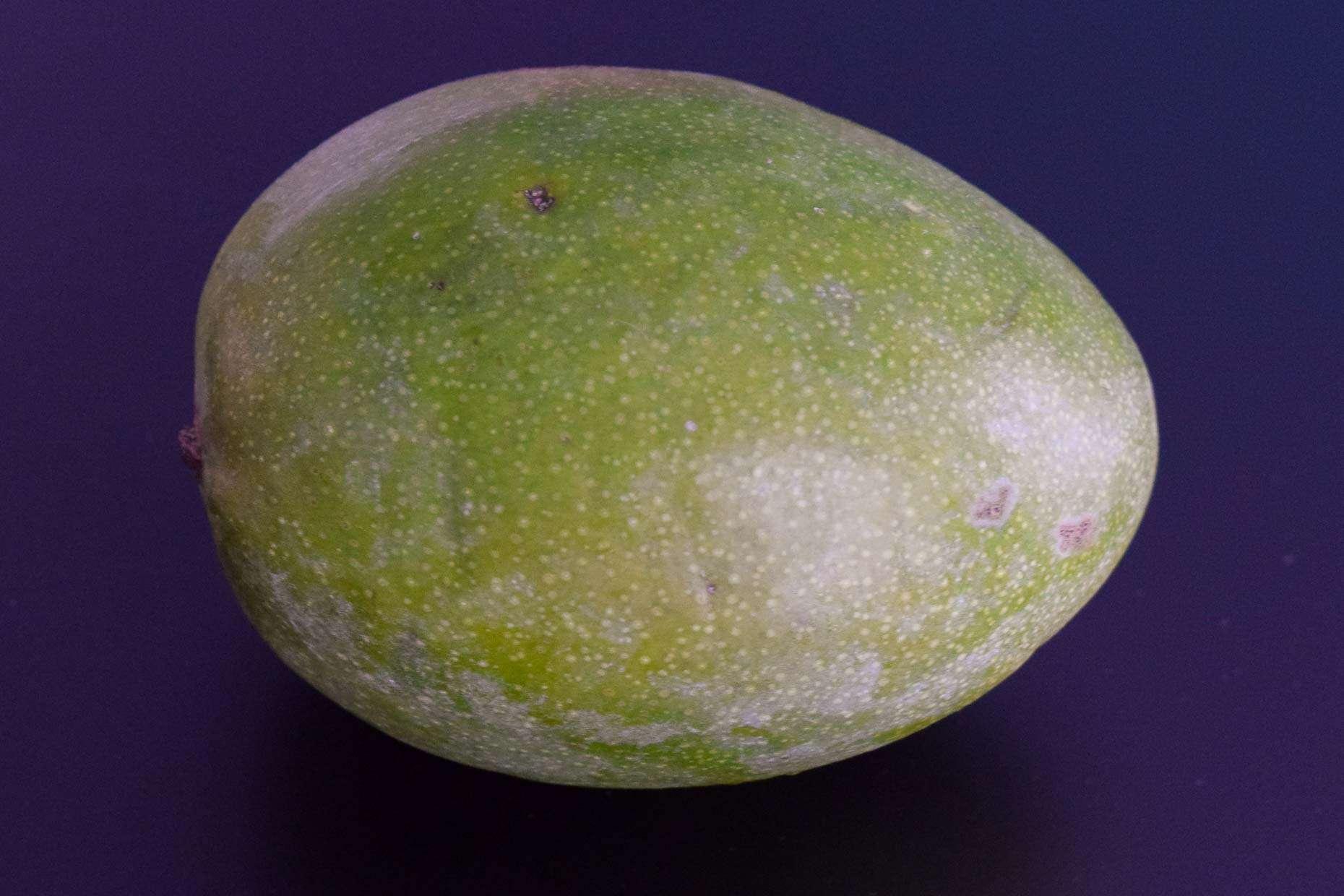 Mango on black background
