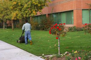 Discover the advantages of commercial landscape maintenance!