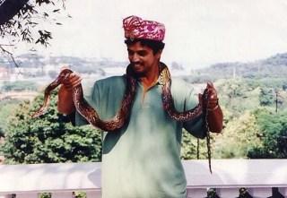 And a python