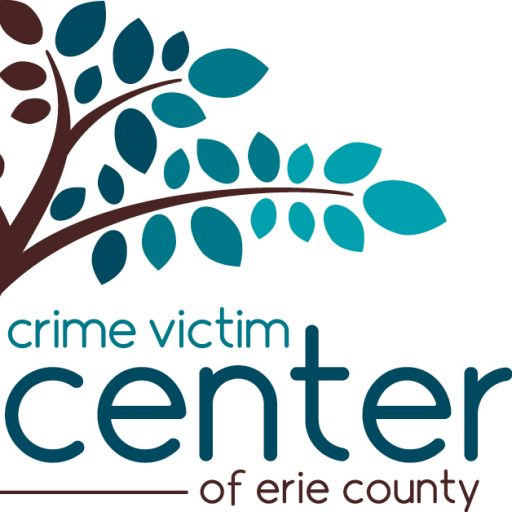 Cyberbullying | Crime Victim Center of Erie County