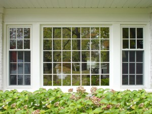 replacement window project in Minneapolis, MN