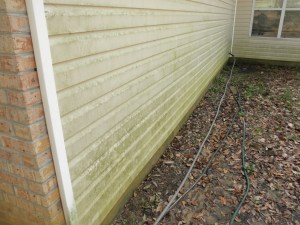 MN exterior house washing