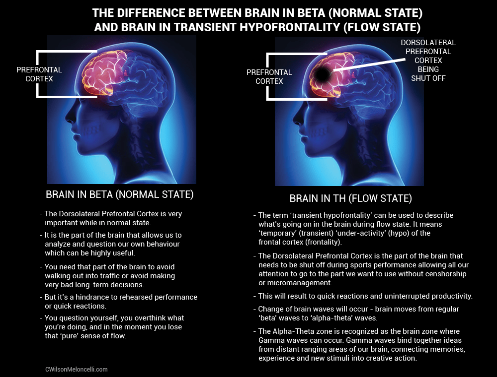 brain in beta, beta brain waves, transient hypofrontality, alpha-theta waves, flow state, into the mind, mind of flow, Deactivate to Activate, activate your subconscious, the power of your subconscious mind
