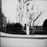 Ein Baum an der katholischen Kirche in Kamen