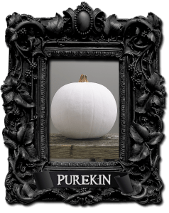 Get creative with Pumkins this Halloween - Purekin Pumpkin