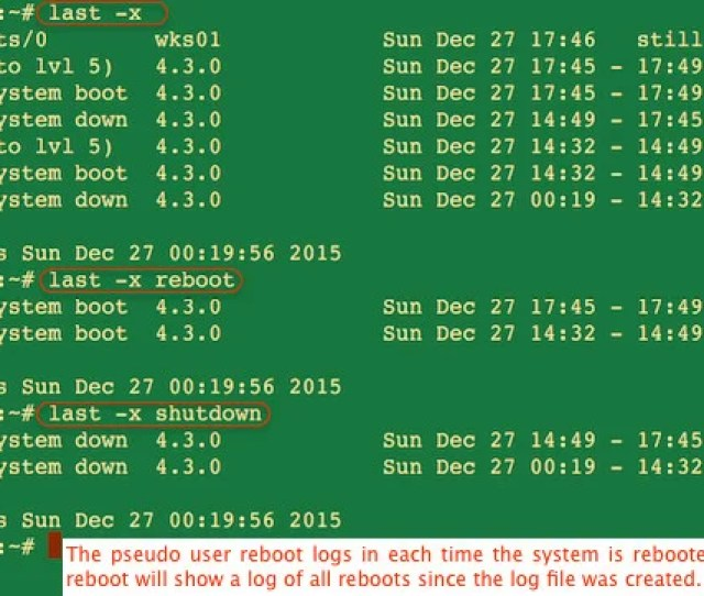 Fig 01 How To View Last Linux System Reboot Date Time