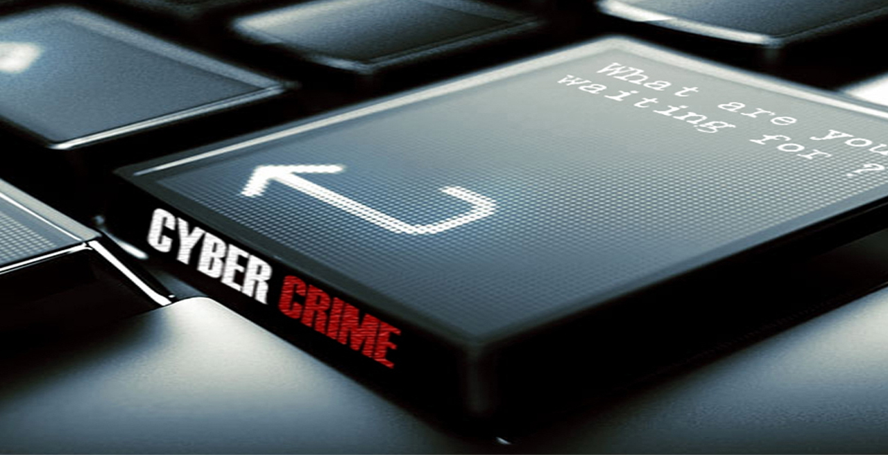 Cyber Crime Courses