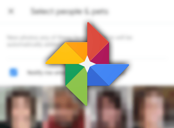 7 Tips and tricks to make the most of Google Photos Live Albums