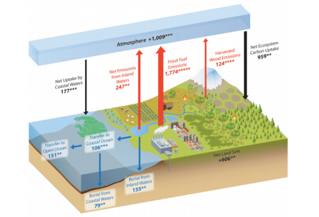 The carbon cycle in North America.