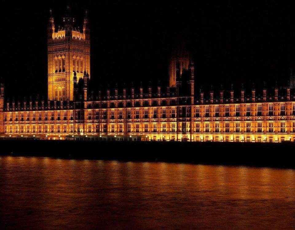 Cyberpolicen | Cyber-Angriff auf Londoner Parlament