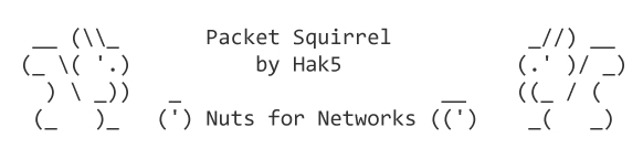 Packet Squirrel: Nuts for Networks