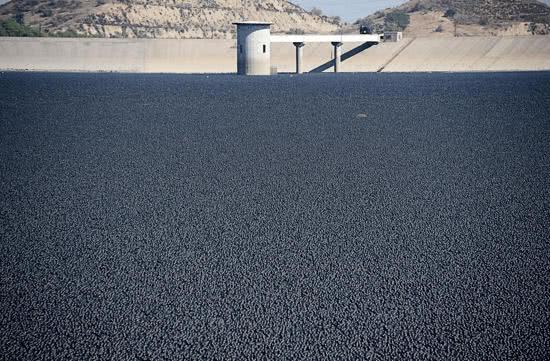 洛杉磯市政府把近億顆黑色塑膠遮陽球倒入水庫