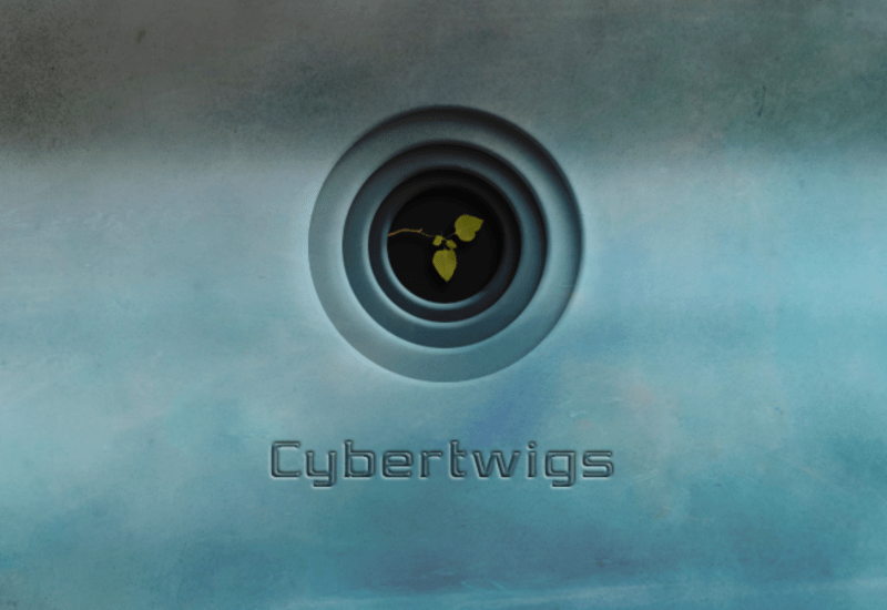 cropped-cybertwigs.png