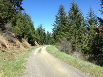 The beginning of Sleppy Mine Road, traversing the side of the Anderson Butte ridge.