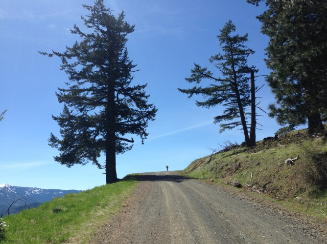 The majesty of Anderson Butte Road.