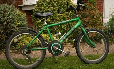 Buying a used kids bike green Raleigh