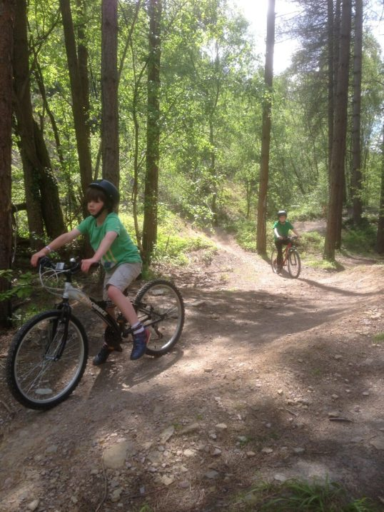 Forest of Dean bike ride with the kids