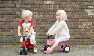 Toddlebike2 is a pre balance bike for 2 year old's