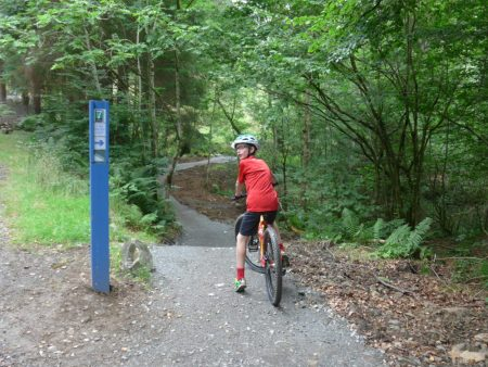 The start of the Kirroughtree Blue Taster Loop, 7Stanes, Galloway Forest, Scotland