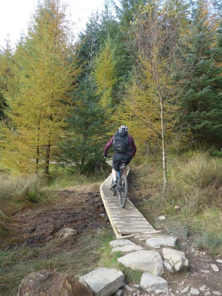 Riding the North FaceMountain Bike Trail at Grizedale Forest