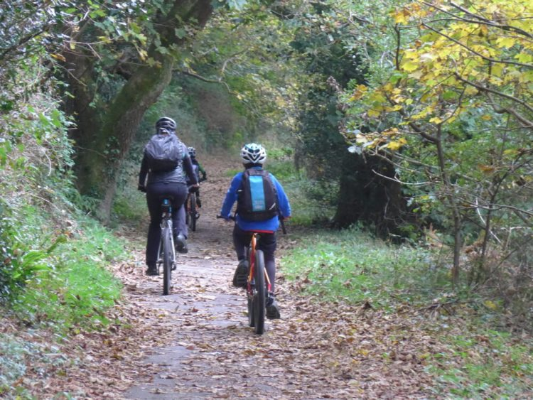 Cornwall coast to coast with kids - great trails