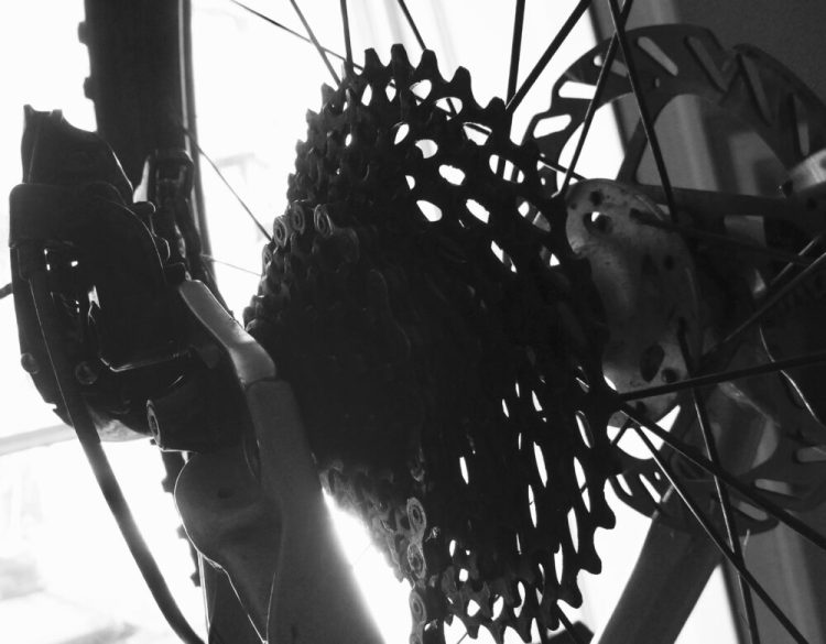 "Buying a kids 24"" wheel mountain bike - rear cassette in monochrome"