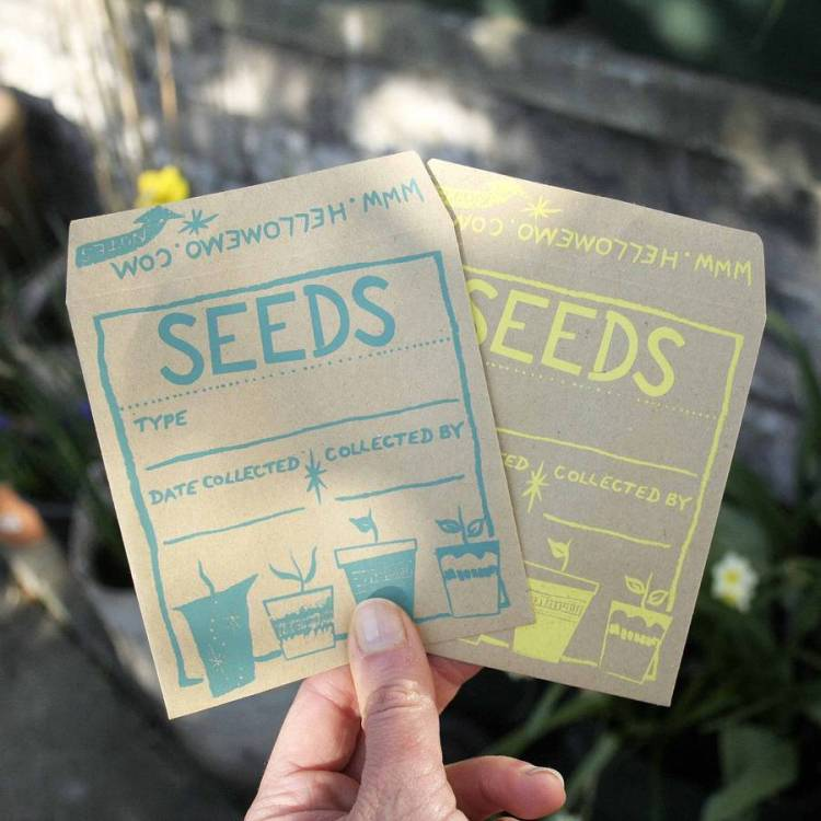 normal_seed-saver-envelopes