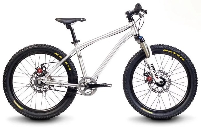 Early Rider Belter 20 inch Trail