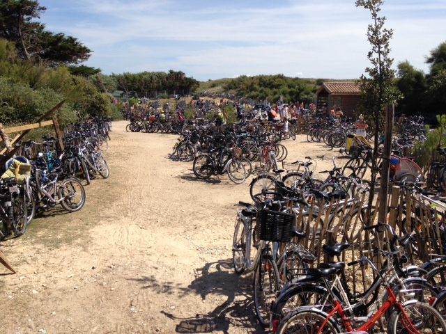 Cycling with Children in France - Everyone, or all ages cycle everywhere on the Ille de Re